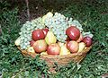 Armenian Fruit Basket.jpg