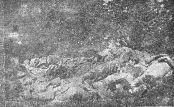 Armenians Corpses in Diyarbakir Genocide