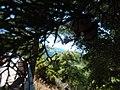 Ataviros, Greece - panoramio (40).jpg
