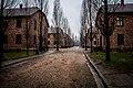 Auschwitz-Birkenau 002.jpg