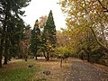 Autumn in Pernik 2.jpg