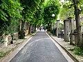 Avenue Marronniers - Le Pré-Saint-Gervais (FR93) - 2021-04-28 - 1.jpg