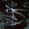 Awakening (8803130696).jpg