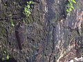 Back wall of Megalithik monuments.3.jpg