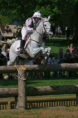 Badminton horse trials open ditch jump.jpg