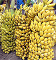 Banana bunch India Tamil word 15.jpg