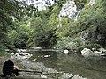 Banat, Nera Canyon - panoramio (59).jpg