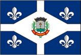 Bandeira do Municipio de Aparecida-SP.png