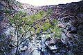 Barranca el Cobre - panoramio.jpg