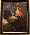 Bartolomeo bimbi, gallo, 1721.JPG
