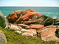 Bay of Fires Wilderness 04.jpg