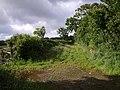 Beaworthy Byway 9 - geograph.org.uk - 486888.jpg