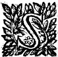 Bertondelli - Ristretto Della Valsugana, 1665 (page 43 crop).jpg