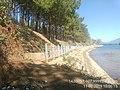 Biển Hồ- Gia Lai.jpg