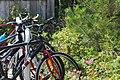 Bicycles in a rack.jpg