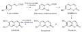 Biosintesis de cumarinas.png