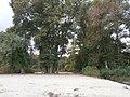 Blahovisnyi, Cherkasy, Cherkas'ka oblast, Ukraine - panoramio - юра запеченко (14).jpg