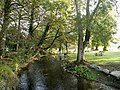 Blarney River in Blarney Castle's Grounds - geograph.org.uk - 596612.jpg