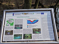 Blue Sources Nature Reserve in Tomaszow Mazowiecki - 06.jpg