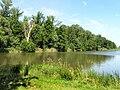 Bohdanečský rybník NR 3.jpg