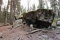 Bonsai Boulders Kananaskis Alberta Canada (16833216826).jpg