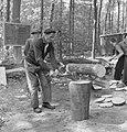 Bosbewerking, arbeiders, boomstammen, werkzaamheden, beilen, Bestanddeelnr 251-8144.jpg