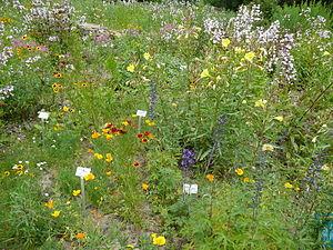 Ecological-Botanical Garden of the University of Bayreuth
