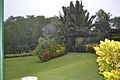 Botanical gardens in Barbados 2007 061.jpg