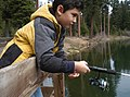 Boy Fishing at Clear Lake-Mt Hood (26432593865).jpg