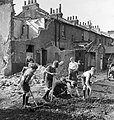 Boys creating an allotment on a bomb site in London during 1942. D8955.jpg