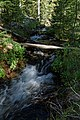 Bridal Veil Falls trail (9298744636).jpg