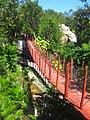 Bridge on Biouniverzoo, Chetumal, Q. Roo - panoramio.jpg