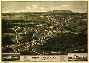 Bridgton, Maine - Bird's eye view of 1888 Bridgton