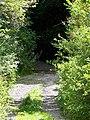 Bridleway, Hillbutts - geograph.org.uk - 1471301.jpg