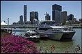 Brisbane River police boats-2 (15169474224).jpg