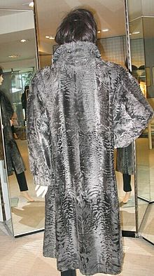 Broadtail coat, natural, back.jpg