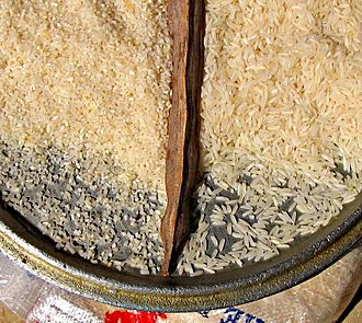 Broken rice - Left, broken or Mali rice; right, long-grain rice. The former is popular in Senegal, where it is used interchangeably with couscous