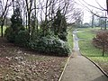 Brough Park - geograph.org.uk - 124513.jpg