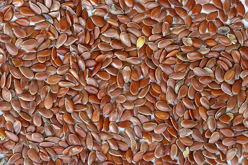 Պատկեր:Brown Flax Seeds.jpg
