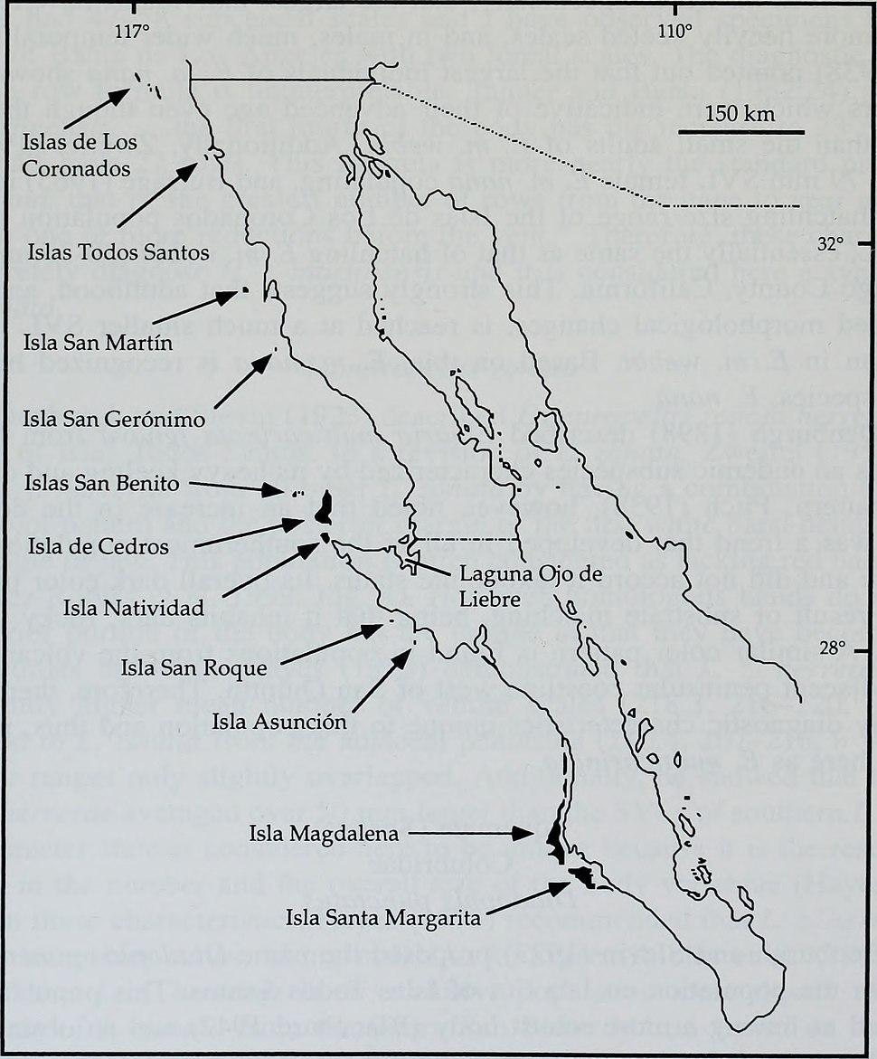 Bulletin (2001) (20423086215)