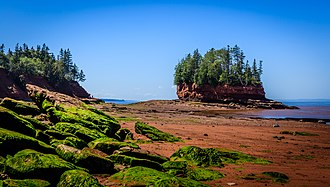 Bay of Fundy - Burntcoat Head Park