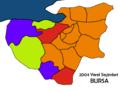 Bursa2004Yerel.png