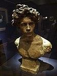 Buste de jeune homme par Jules Dalou, 1877.jpg