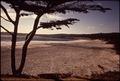 CALIFORNIA-MONTEREY BAY - NARA - 543296.tif