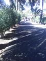 Camino Largo2.png