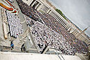Canonization 2014- The Canonization of Saint John XXIII and Saint John Paul II (14033229871).jpg