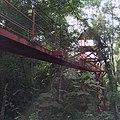 Canopy walkway at Peninsular Botanical Garden (Thung Khai),Trang - panoramio (2).jpg