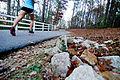 Cape Fear River Trail, Fayetteville, NC.jpg