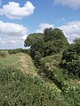 Car Dyke - geograph.org.uk - 893874.jpg