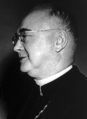 Ngo Dinh Diem presidential visit to the United States - Cardinal Francis Spellman (pictured) organized political support for Diệm among Catholics and Americans.